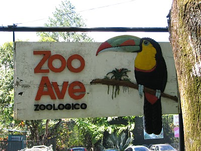 Zoo Ave Becomes Center Of Rescue For Hundreds Of Animals
